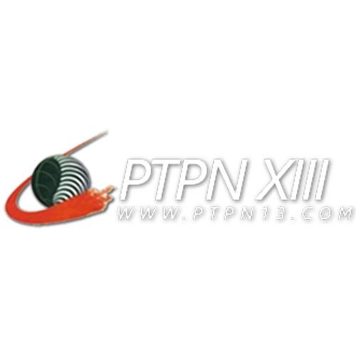 PTPN XIII